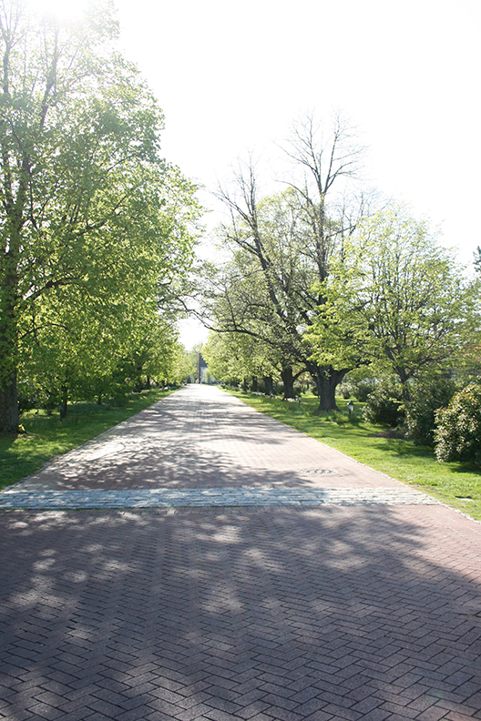The road leading to The Inn at Perry Cabin